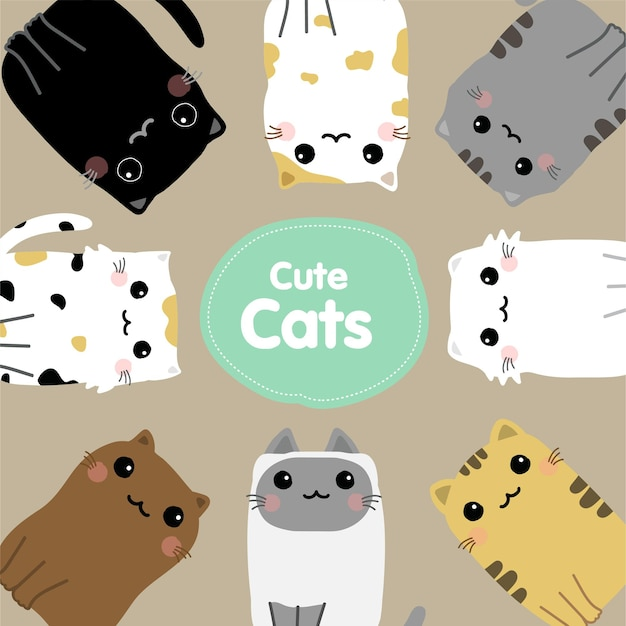 귀여운 고양이 만화 세트 벡터