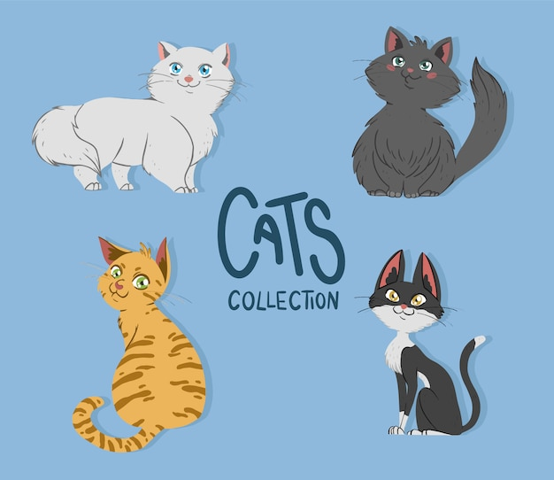 Collezione di simpatici gatti