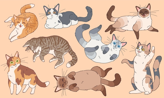 Cute cats. funny kittens different breeds, pets sleeping and playing cartoon  happy kitty face drawing logo characters set