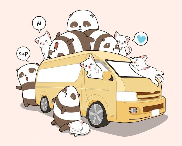 Cute cats and panda and van.