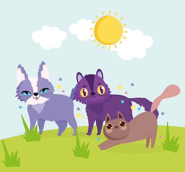 Симпатичные кошки играют в траве мультфильм векторные иллюстрации