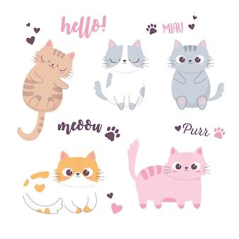 眠っているかわいい猫と異なる品種の面白い動物漫画のキャラクター
