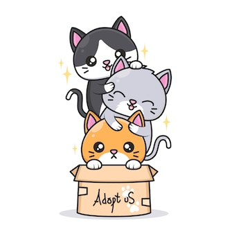 Cute cats with different color in the box