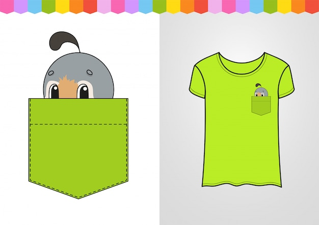 Cute character in shirt pocket. quail bird.