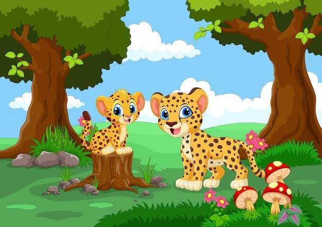 Милые гепарды в лесу
