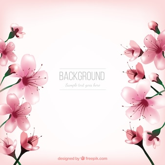 Cute cherry blossom background