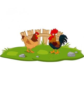 Cute chicken cartoon in the grass