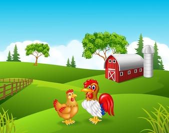 Cute chicken cartoon in the farm