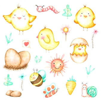 Cute chicken cartoon set hand drawn watercolour for nursery and kids