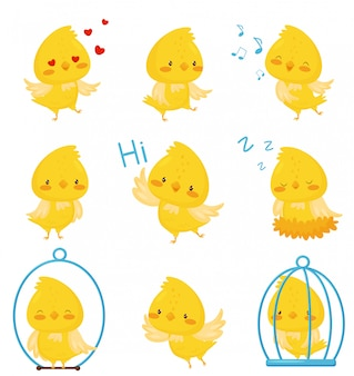 Cute chicken chracters in various situations set, emotional funny bird cartoon character  illustration on a white background