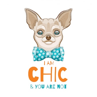 Cute chihuahua dog. doodle sketch for t-shirt print, poster, cart design.