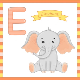Cute children abc animal alphabet e flashcard of elephant