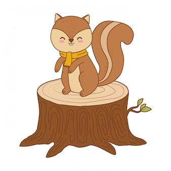 트렁크 숲 캐릭터에 귀여운 다람쥐
