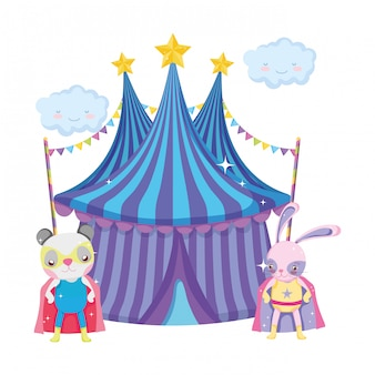 Cute circus cat and rabbit in tent