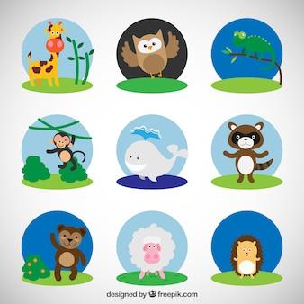 動物のかわいいコレクション