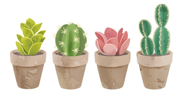 Симпатичная коллекция кактусов в акварели