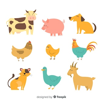 Cute collection with domestic animals