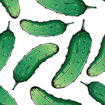 Cute colored hand drawn of fresh cucumber on white background