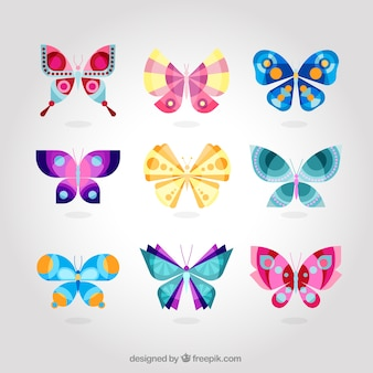 Cute colorful butterfly collection