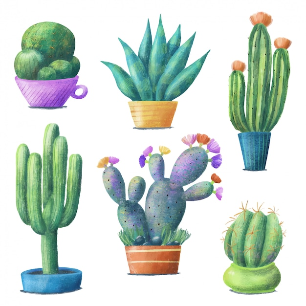 Cute colorful cactus set, houseplants in pots
