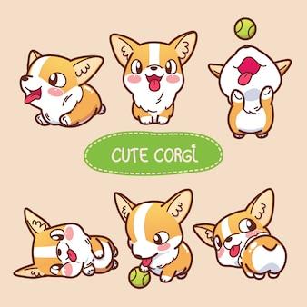 Cute corgi collection