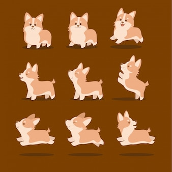 Cute corgi dog vector illustration set