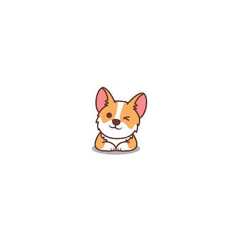 Cute corgi dog winking eye