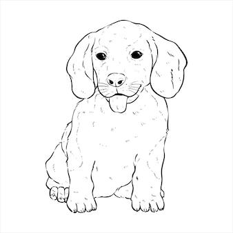 손으로 그리는 귀여운 코기 개 또는 흰색 배경에 스케치 스타일