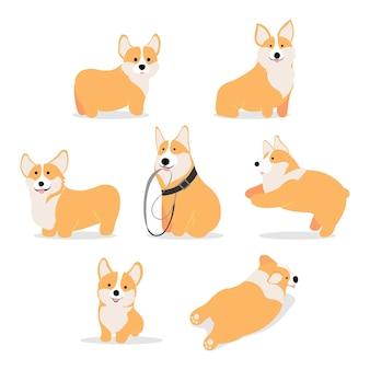 白い背景のプレミアムベクトルで分離されたかわいいコーギー子犬