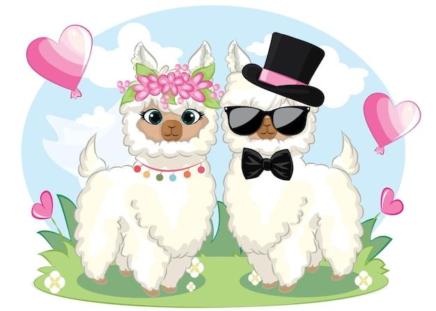ドラマラマテキストのないかわいいカップル漫画ラマ。幸せなバレンタインデーのグリーティングカード。