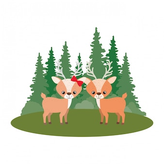 Cute couple of deers with landscape