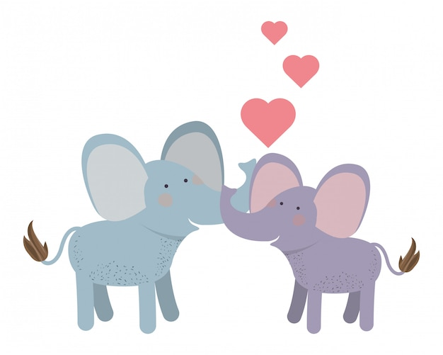 Cute couple elephants with hearts