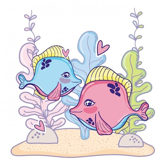 Cute couple fishes animal with seaweed plants