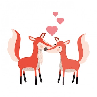 Cute couple foxes with hearts