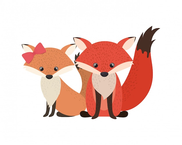 Cute couple of foxes