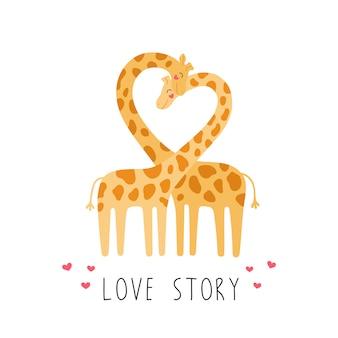 기린의 귀여운 커플 야생 동물의 사랑 이야기.