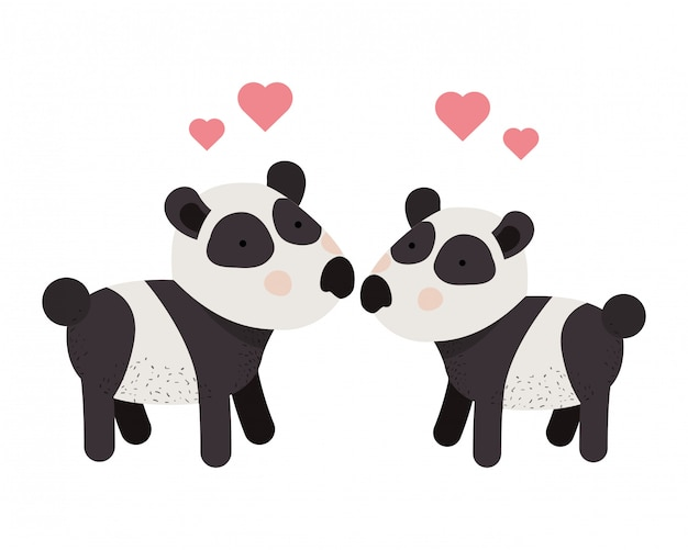 Cute couple pandas with hearts