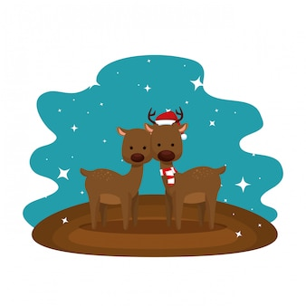 Cute couple reindeer christmas characters