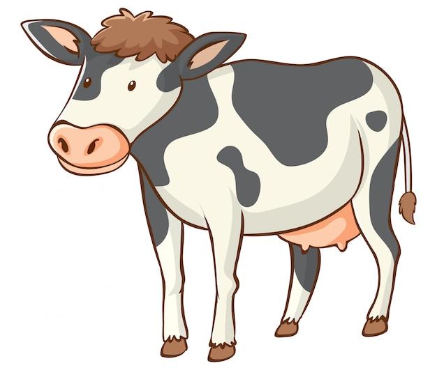 白い背景の上のかわいい牛