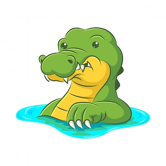 Cute crocodile that is soaking in the river
