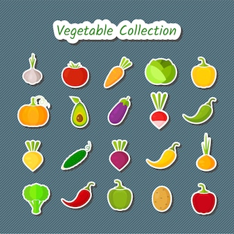 Cute design vegetable icon set of isolated patches