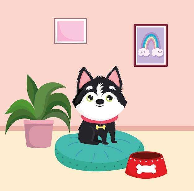 집에서 귀여운 강아지