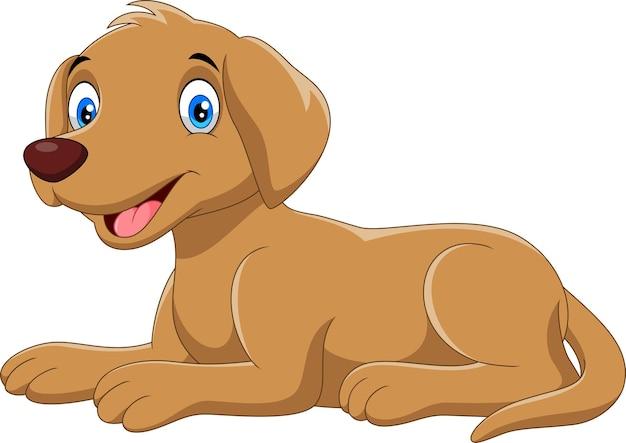 Милый мультфильм собака, изолированные на белом фоне