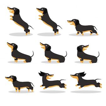 Cute dog dachshund vector illustration set