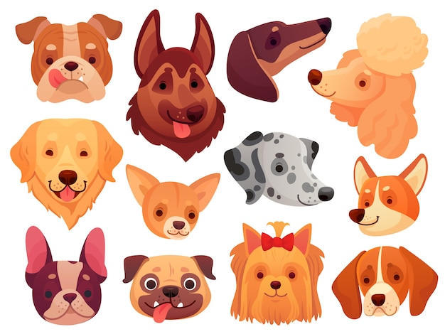 Cute dog face. puppy pets, dogs animals breed and puppies heads set