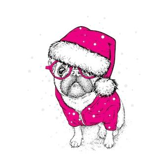 サンタの帽子をかぶったかわいい犬