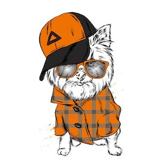 Милая собака в кепке и очках