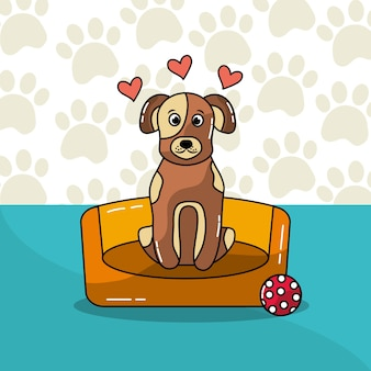 Cute dog sitting in bed and ball with heart paws background