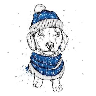 Милая собака в шляпе санта-клауса. новый год и рождество.