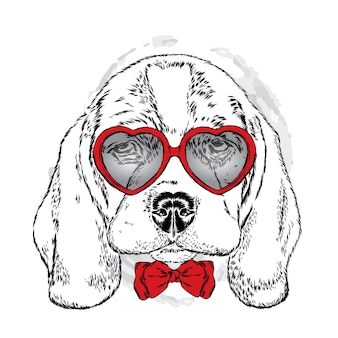 ハート型の眼鏡をかけているかわいい犬